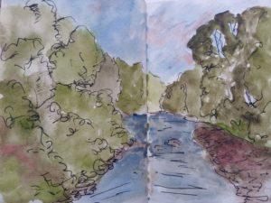 Field Sketch