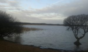 This is a picture of Kenfig Pool